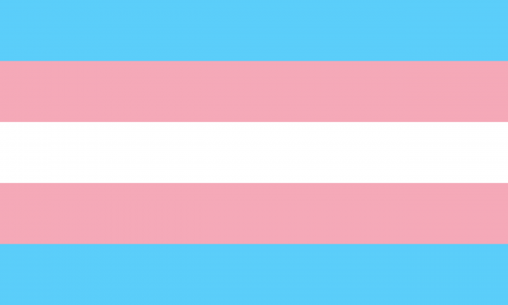 NYC Local Trans Rights Organizations to Support