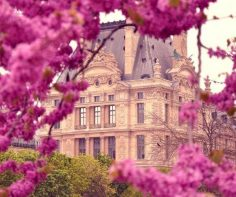 Best plans for Paris in the Spring